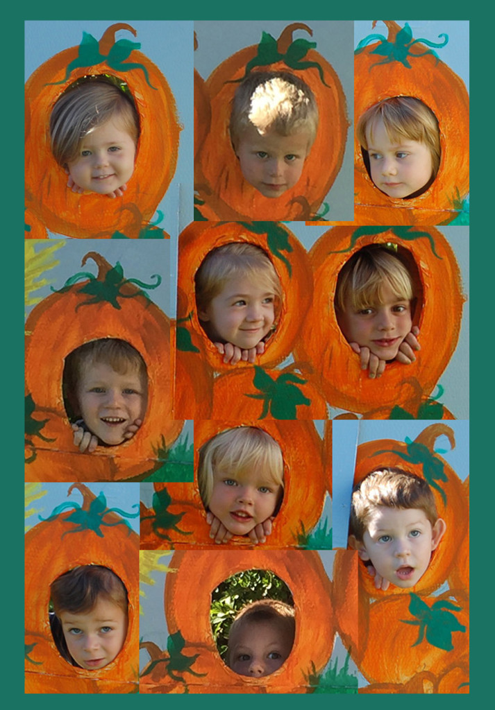 PUMPKIN FACE COLLAGE2